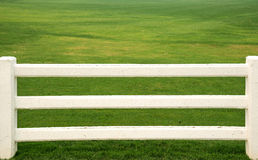 Cement white fence , White fence , grass. Stock Image