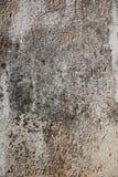 Cementachtergronden Stock Foto's