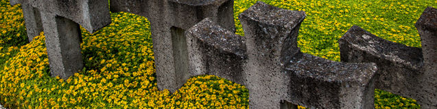Cementary памяти Стоковые Фото