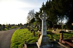 Cementary photos libres de droits