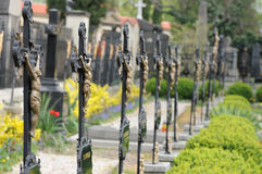 Cementary royalty free stock photo