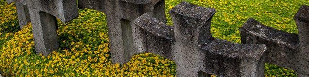 Cementary de la memoria Fotos de archivo
