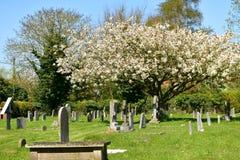 Cementary-Kirche St Andrew, Walberswick Großbritannien, Stockbild