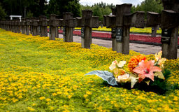 Cementary of Memory. Second World War in Palmiry, Poland Royalty Free Stock Images