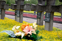 Cementary of Memory. Second World War in Palmiry, Poland Stock Photography