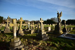 Cementary. Old cemetery in England, the tombs of some very old, even after 200 years, stone, green grass, eternal rest, crosses, angels, monuments, the memory of Royalty Free Stock Images