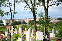 Cementary in Polonia Fotografie Stock