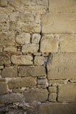 Cementera bakgrund med fuktighet och fördärva arkivbild