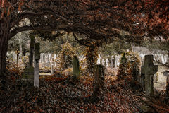 Cementerio antiguo con muchas lápidas mortuorias con colores silenciados Fotos de archivo