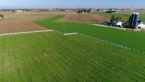 Cementerio de Amish en campo según lo visto por un abejón metrajes