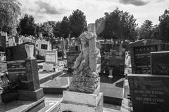 Cementerio de Belgrado Fotos de archivo