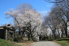Cementerio de Bosque verde en Brooklyn, NY Imágenes de archivo libres de regalías
