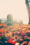 Cementerio del otoño imagen de archivo libre de regalías