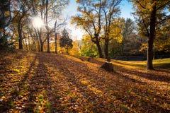 Cementerio del otoño Foto de archivo