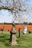 Cementerio del país Imágenes de archivo libres de regalías