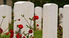 Cementerio del soldado en Normandía Fotos de archivo
