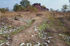 Cementerio en prado con la hierba seca Fotografía de archivo
