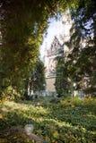 Cementerio evangélico viejo Fotografía de archivo