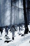 Cementerio grave del bosque de las etiquetas de plástico Fotografía de archivo