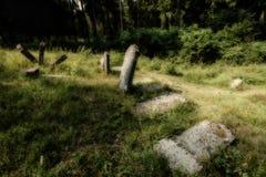 Cementerio judío abandonado viejo Ejemplo borroso del efecto ilustración del vector