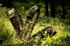 Cementerio judío abandonado viejo Ejemplo borroso del efecto libre illustration