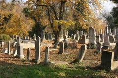 Cementerio judío viejo Fotos de archivo libres de regalías