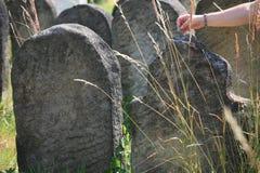 Cementerio judío viejo en Holesov Foto de archivo libre de regalías