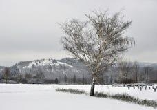 Cementerio militar en invierno Foto de archivo