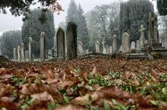 Cementery在秋天 图库摄影