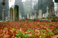 Cementery in autumn Royalty Free Stock Images