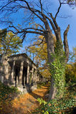 Cementery ebreo Fotografie Stock
