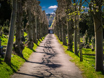 Cementery pathway. Walkway in a cementery in England Stock Images