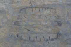 Cementgolv med spår Royaltyfri Bild