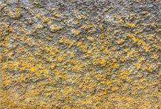 Cementmurbrukvägg Royaltyfri Foto