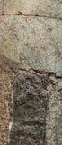 Cementmuur Royalty-vrije Stock Fotografie