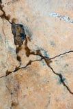 Cemento agrietado Imagen de archivo