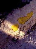 Cemento corroso Fotografia Stock Libera da Diritti