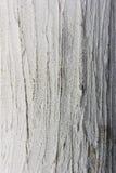 Cemento di Piller in pieno del telaio Fotografia Stock