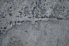 Cemento secado Fotos de archivo