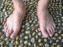 Cemento strutturato pavimentato con le pietre ed il massaggio del piede Immagine Stock