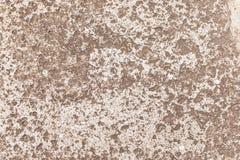 cementowa betonowa ściana Obraz Royalty Free
