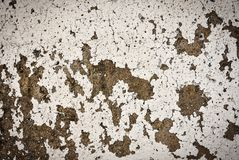 Cementowy ścienny tekstury tło obraz royalty free