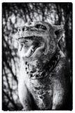 Cementowy pies Obraz Royalty Free