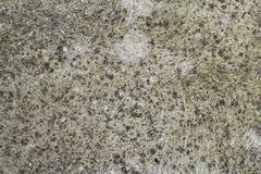 Cementtexturen Stock Afbeelding