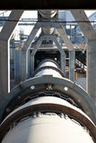 cementväxt Royaltyfria Foton