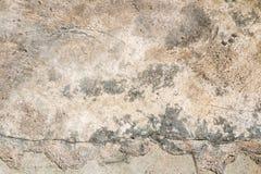 Cementvloer Stock Afbeelding
