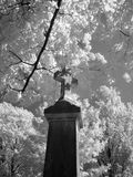 Cemetary. Sherbrooke infrared cemetary with tree and grave Stock Photography