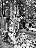 Cemetary Angel. Artistic look in black and white. Royalty Free Stock Photography