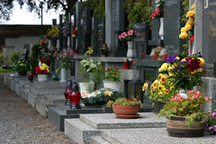 Cemetary with flowers. European Cemetary with flowers stock images