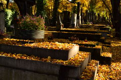 Cemetary Royalty Free Stock Photography